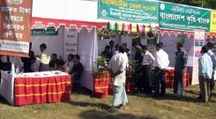 Stalls  at Remittance Fair