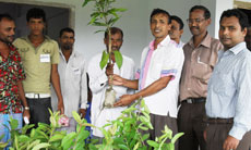 Wahadpur UP Chairman distributed seedlings among the participants