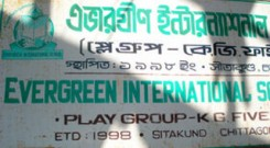 evergreen4