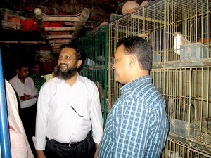 Visiting Nur Akter's pigeon and dove firm at Katgor, Chittagong