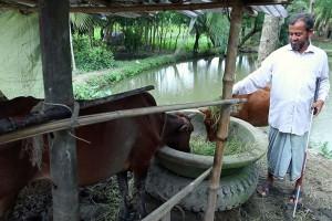 PWD's Dairy Farm
