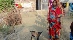 Women in front of her houses with YPSA provided goat